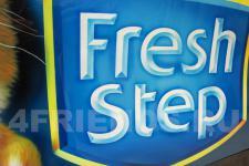 "Renault ""Fresh step"" фото 3"