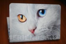 аэрография Ноутбук Sony кошка - аэрография №1